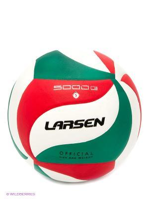 Мяч волейбольный VB-ECE-5000G Larsen. Цвет: белый, зеленый, красный