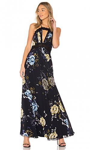 Вечернее платье lace trim JILL STUART. Цвет: черный
