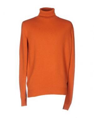 Водолазки CERDELLI. Цвет: оранжевый
