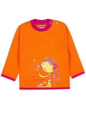 Джемперы Yallo Kids. Цвет: оранжевый