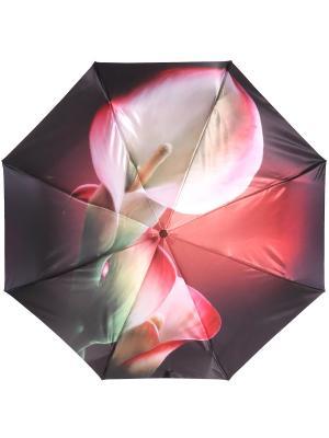 Зонт Trust. Цвет: коралловый, темно-бордовый