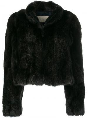 Куртка на молнии Sprung Frères. Цвет: чёрный