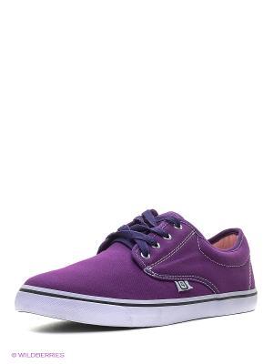 Кеды 4U. Цвет: темно-фиолетовый, белый