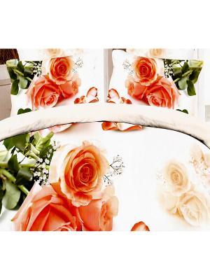 Комплект постельного белья Brend Оранжевые розы La Pastel. Цвет: оранжевый