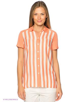 Блузка Finn Flare. Цвет: персиковый, белый