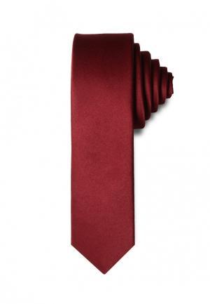 Галстук Stefano Danotelli. Цвет: бордовый