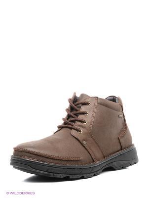 Ботинки Shoiberg. Цвет: бронзовый, темно-коричневый, серый