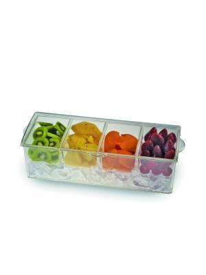 Тарелка для закусок On Ice Excelsa. Цвет: прозрачный