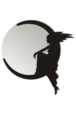 Зеркало Месяц W-ERA. Цвет: черный, зеркальный