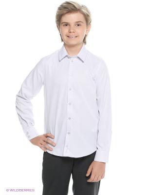 Рубашка Button Blue. Цвет: лиловый