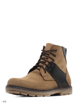 Ботинки зимние мужские. натуральнвя кожа ZET. Цвет: бежевый