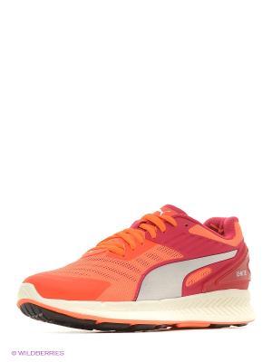 Кроссовки IGNITE v2 Wn s Puma. Цвет: оранжевый