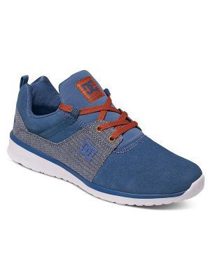 Кроссовки DC Shoes. Цвет: синий, голубой, белый