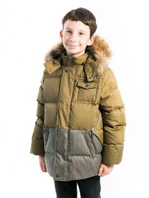 Куртка Максим Аксарт. Цвет: темно-зеленый