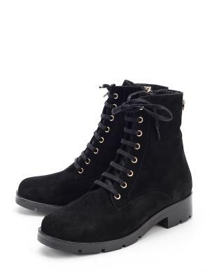 Ботинки Pera Donna. Цвет: черный