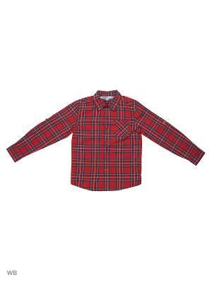 Рубашка Modis. Цвет: серый, красный