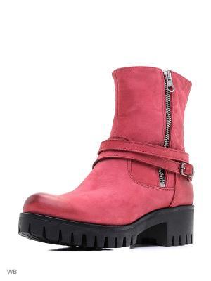 Ботинки INDIANA. Цвет: розовый