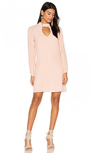 Платье с овальным вырезом BLAQUE LABEL. Цвет: розовый