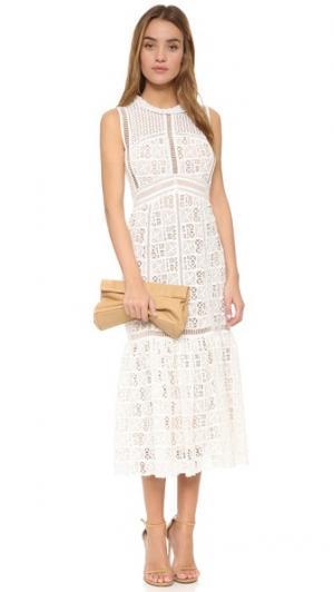 Платье без рукавов из ажурного кружева Rebecca Taylor. Цвет: оттенок белого