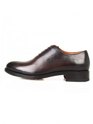 Туфли Sandro G. Цвет: темно-коричневый