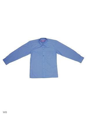 Рубашка CARAT.. Цвет: синий