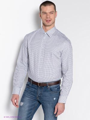 Рубашка INCITY. Цвет: белый, голубой