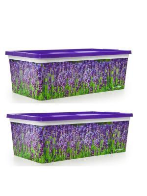 Комплект из 2х коробок  для мелочей Лаванда. Объемом 5,5 л Полимербыт. Цвет: сиреневый