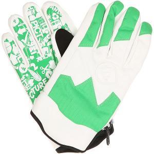 Перчатки сноубордические  SHEEPER Green Picture Organic. Цвет: белый,зеленый
