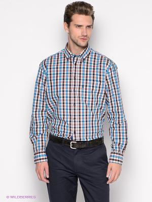 Рубашка ARROW. Цвет: синий, голубой, бежевый, белый