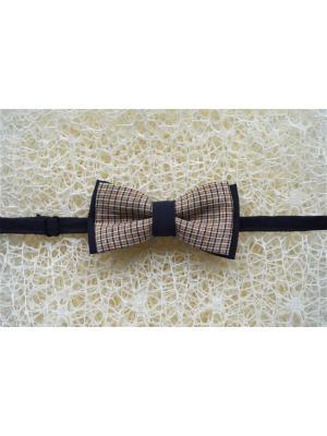 Галстук-бабочка BOB Accessories. Цвет: черный, коричневый