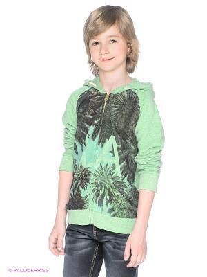 Толстовка American Outfitters. Цвет: светло-зеленый