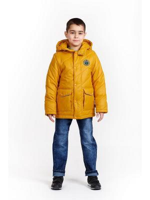 Куртка для мальчика NIKASTYLE. Цвет: горчичный