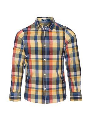 Рубашка TOM TAILOR. Цвет: коричневый