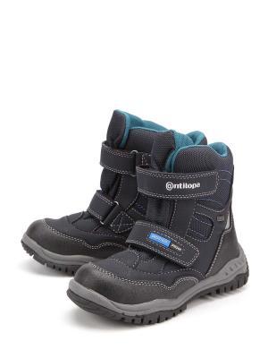 Ботинки Антилопа. Цвет: черный