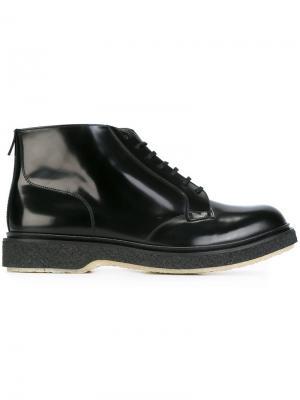 Ботинки на шнуровке Adieu Paris. Цвет: чёрный