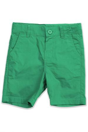 Шорты Me&We. Цвет: зеленый