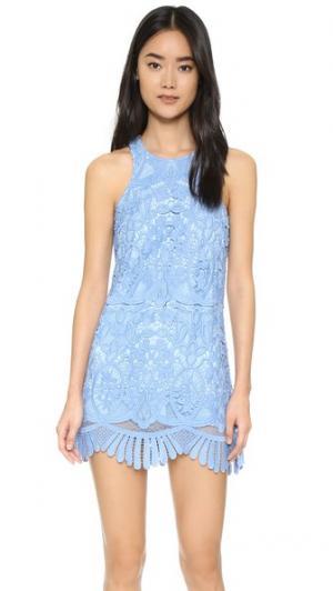 Мини-платье Caspian Lovers + Friends. Цвет: кристальный голубой