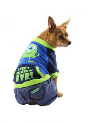 Толстовка с джинсами TRIOL. Цвет: синий