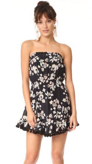 Короткое платье Wild Grace без бретелек с помпонами Athena Procopiou. Цвет: черный/микс