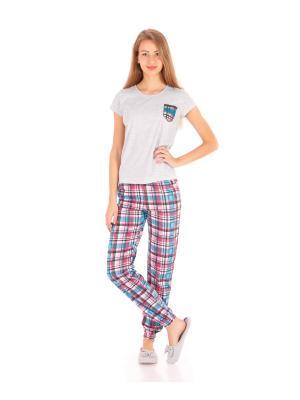 Комплект домашний: футболка, брюки, коллекция Клеточка Апрель. Цвет: серый, голубой, коричневый