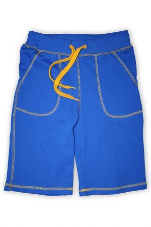 Шорты Me&We. Цвет: синий, оранжевый