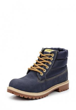 Ботинки Dream Feet. Цвет: синий