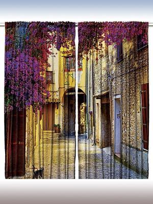 Комплект фотоштор для гостиной Старинный город, плотность ткани 175 г/кв.м, 290*265 см Magic Lady. Цвет: фиолетовый