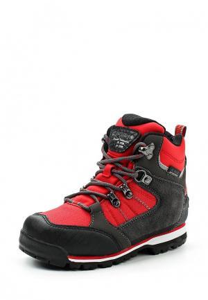 Ботинки Icepeak. Цвет: красный