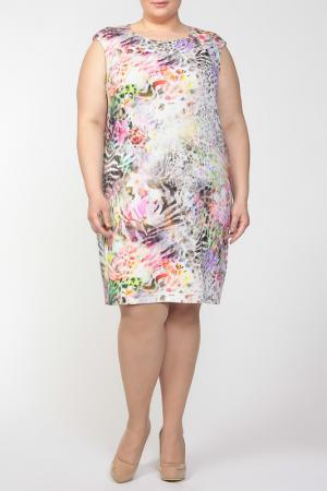Платье QNEEL Q'NEEL. Цвет: мультицвет