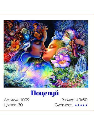 Живопись на холсте Поцелуй + диск в подарок MantraArt. Цвет: белый