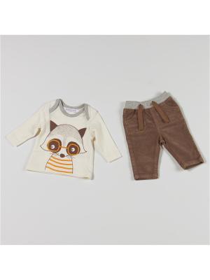 Комплект одежды BABALUNO. Цвет: кремовый, коричневый