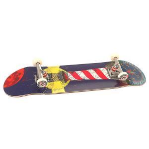 Скейтборд в сборе  Mayak Denim/Red/White 31.75 X 8 (20.3 См) Nord. Цвет: синий,красный,белый