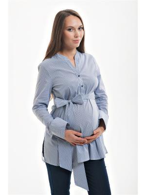 Блуза для беременных с поясом week by. Цвет: синий, белый