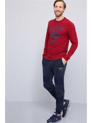 Свитшот U.S. Polo Assn.. Цвет: темно-красный
